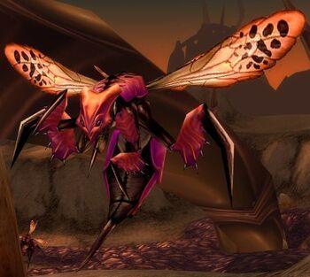 Hive'Regal Spitfire