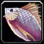 Inv misc fish 07.png