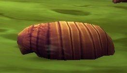 Vile Larva
