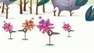 S1e3a Birdheads blooming half 4