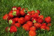 Strawberriess