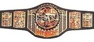 ECWtagbelt