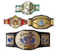 WWE IC Title History