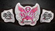 2014 WWE Divas Championship Design