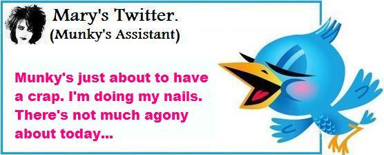 Mary twitter netbook