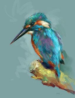 Bird by zhuzhu