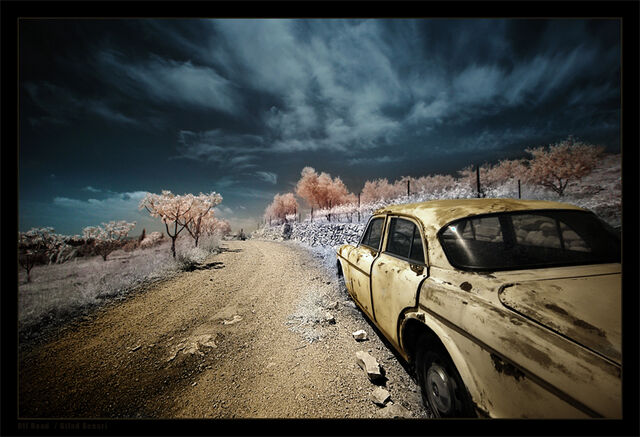 File:Off Road by gilad.jpg