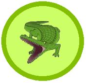 Krokodyle1.png