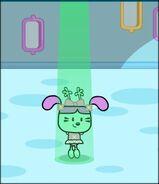 Daizy green light