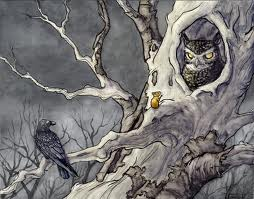 File:Owl1.jpg