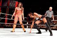 Tamina against Alicia-Fox