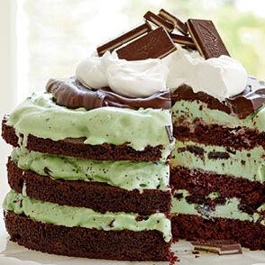 Mint-chocolate-chip-ice-cream-cake-sl-l