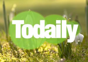 WX FORUM BRANDING (Spring '17) - Todaily official logo