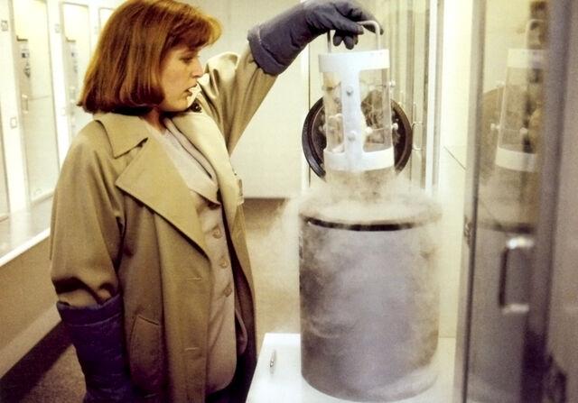 File:Dana Scully Erlenmeyer Flask Alien Fetus.jpg
