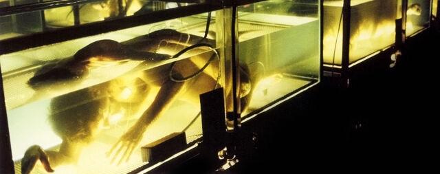 File:Tanks Hybrids Zeus Storage Erlenmeyer Flask.jpg