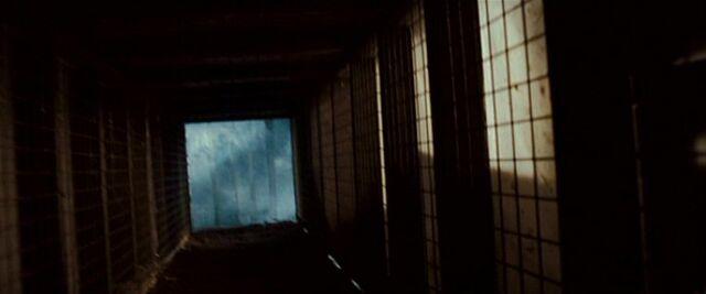 File:2502 Bellflower Road (tunnel).jpg