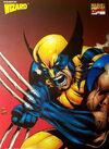 Wolverine-newpic