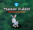 MannerRabbit