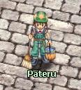 Pateru