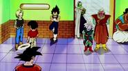 DBZKai Piccolo vs Shin07775
