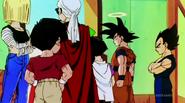 DBZKai Piccolo vs Shin18746
