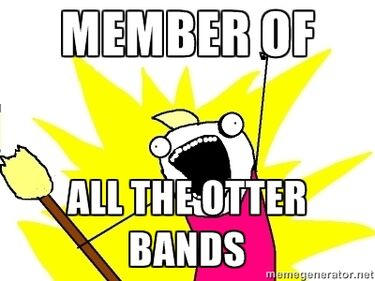 All the bands