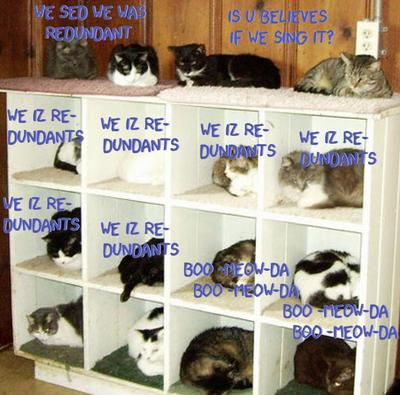 Redun-da-yada-cats