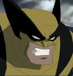 Hulk vs. Wolverine- Wolverine