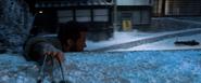 Logan holding on - Snowplow