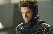 Wolverinebattle