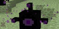 Ender Watcher