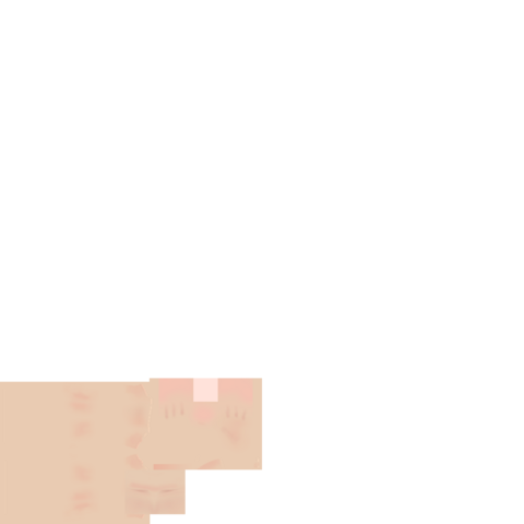 File:ArmTemplate.png