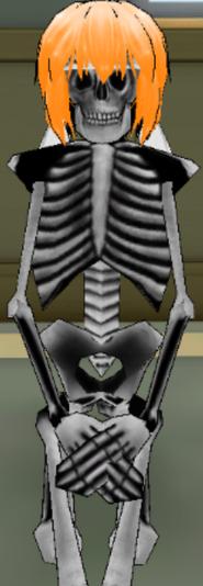 December3rd2015SkeletonShia
