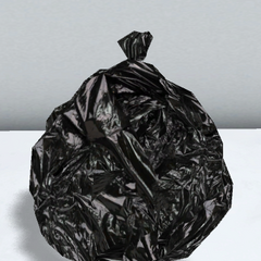 A garbage bag. February 17th, 2016.