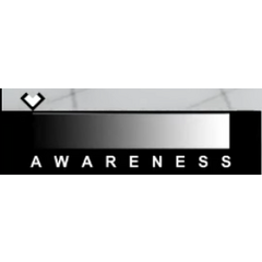 Awareness HUD.