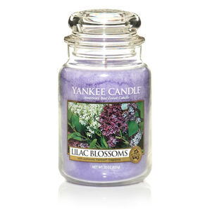Lilac-blossoms-yankee-cangle