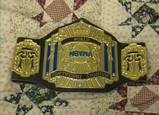File:NBYWA World Heavyweight Championship 3 Small.png