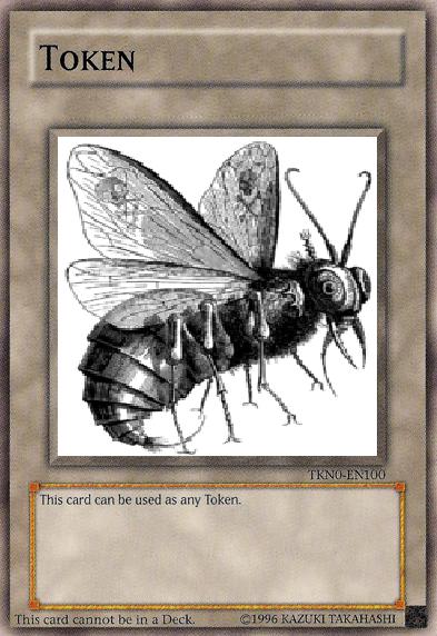 TKN - Fly Token