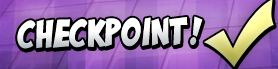 Checkpoint lrg