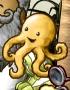Portrait OctopusM