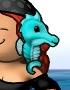 Portrait SeahorseF