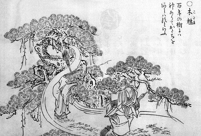 File:Kodama-sekien.jpg
