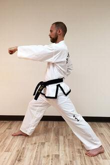Taekwon-do-middle-punch-9
