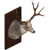 File:Yohunting trophy.png