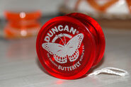 Duncan-bfly2