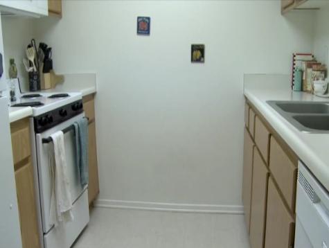 File:Orange Kitchen.png