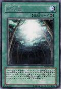 AncientForest-ANPR-JP-R