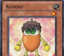 Acorno