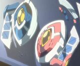 Leo and Luna's custom Disks
