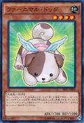 FluffalDog-SPFE-JP-C